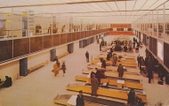 usa-new-york-new-york-international-airport-streamlined-customs-facilities-18-2765