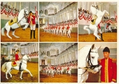 austria-vienna-spanish-riding-school-18-0398